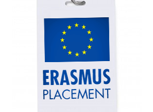 erasmus-placement1